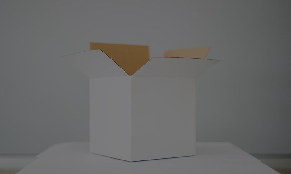 geöffnete Pappbox